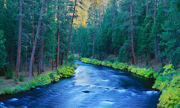Metolius River in Autumn, Camp Sherman, Oregon