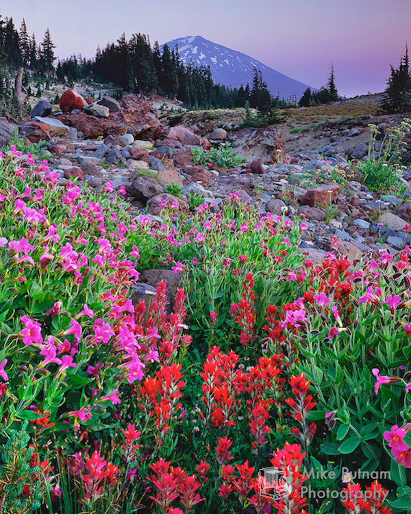Mt Bachelor Fine Art Photograph