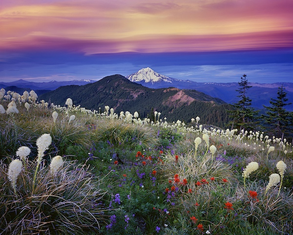 Oregon's Beautiful Mount Jefferson