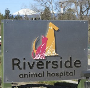 Riverside-Animal-Hospital-1