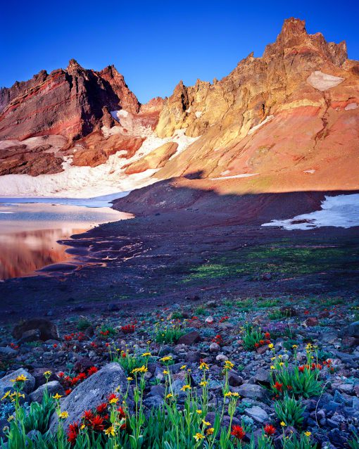 oregon water, top,broken top trail,wildflowers,indian paintbrush,senecio,sunrise,no name lake,glacial lake