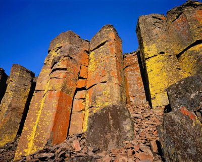 Lichen covered basalt columns near Sisters, Oregon