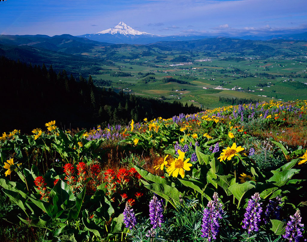 mount hood parkdale women Do you want to find mount hood parkdale homes for sale information view our homes for sale in oregon at re/max.