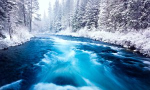 Metolius River in Winter