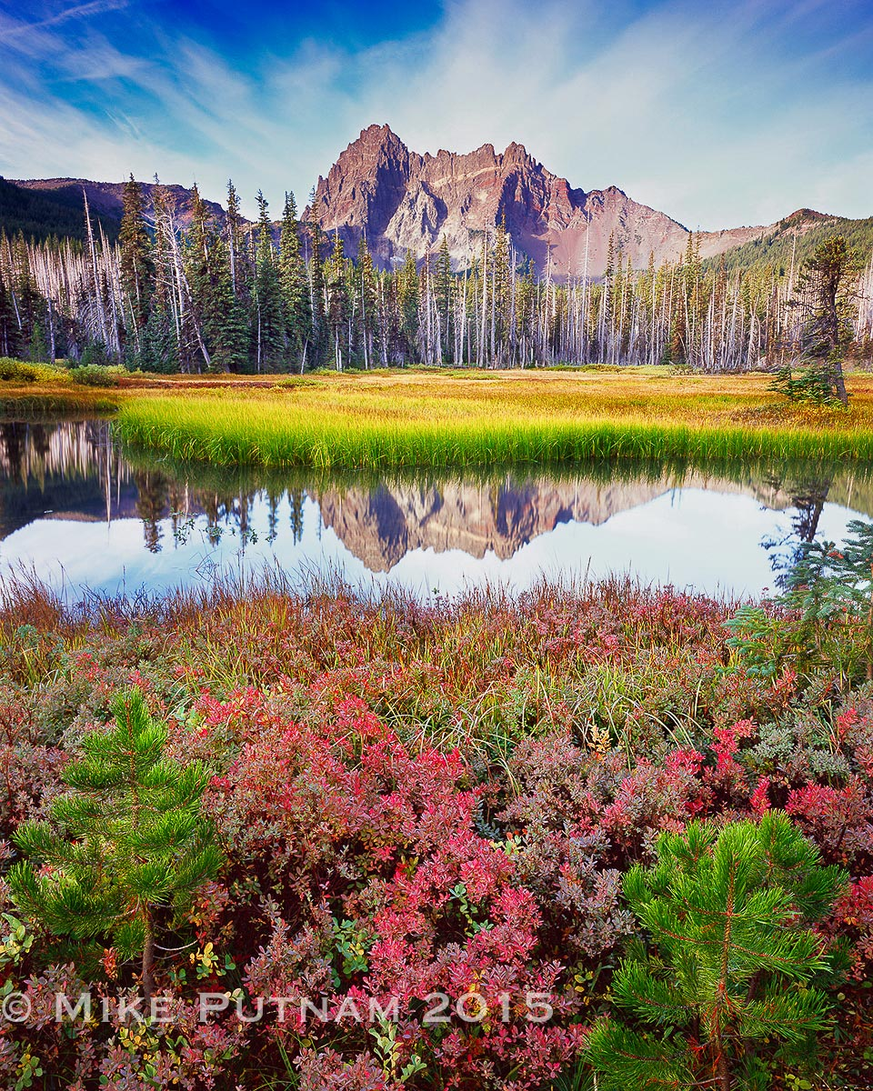 "Three Fingered Jack, ""Mountain Berry Blend"""