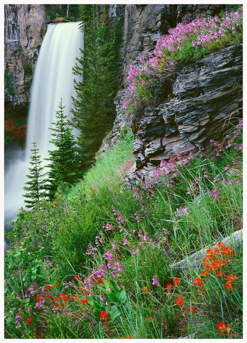 Tumalo-Falls-in summer Greeting-Card