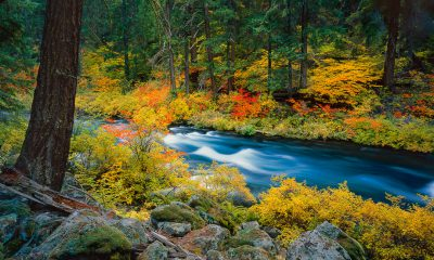 "fine art landscape photographs, fine art landscape prints,""Autumn Rush"" Metolius River with fall color, Oregon River"