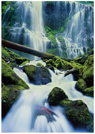 Proxy Falls Greeting Card/Note Card, Oregon waterfall greeting card, note cards
