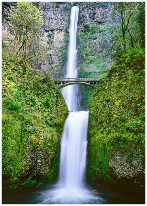 Multnomah Falls Greeting Card, note card, Oregon waterfall greeting card, Oregon greeting cards