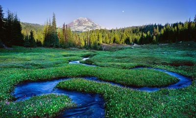 Serpentine Stream, Three sisters Oregon