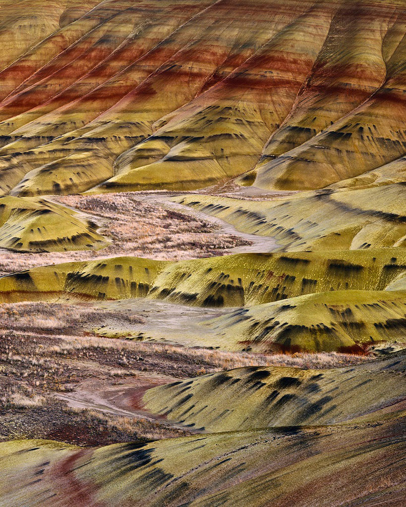 """Painted Hills Detail"""