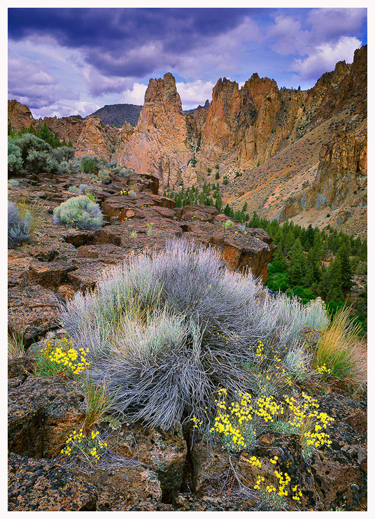 Smith Rock Basalt Columns Greeting Card