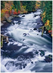 Deschutes River Greeting Card Note Card