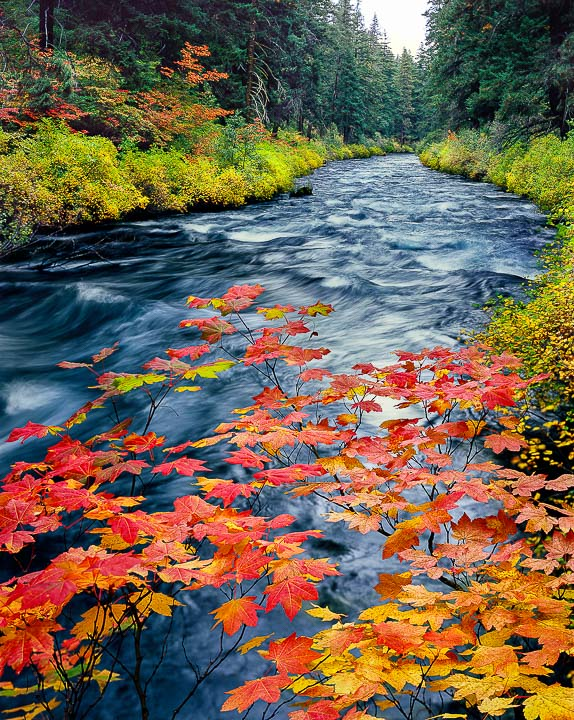 Top 10 Fall color Hikes in the Bend, Oregon area!