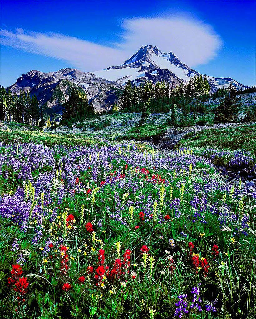 Mt Jefferson Wilderness Area Oregon