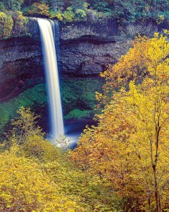 Silver Falls State Park photo