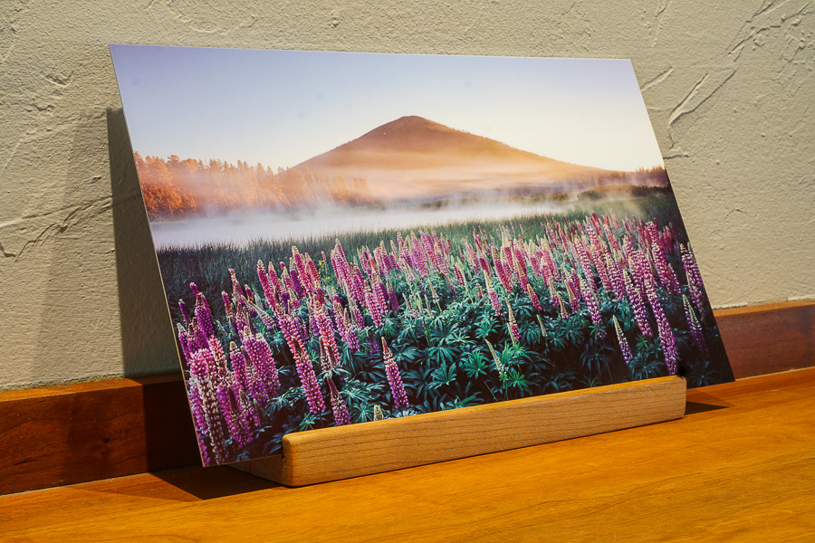 Black butte desk top print landscape photo, metal, print, Bend Oregon gift, Black Butte Ranch