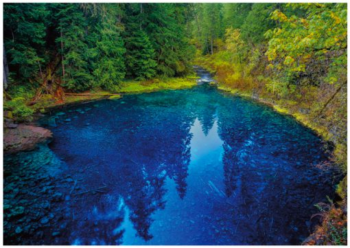 Eugene Oregon Greeting Cards, Tamolitch Pool Greeting Cards, Blue Pool Note Cards