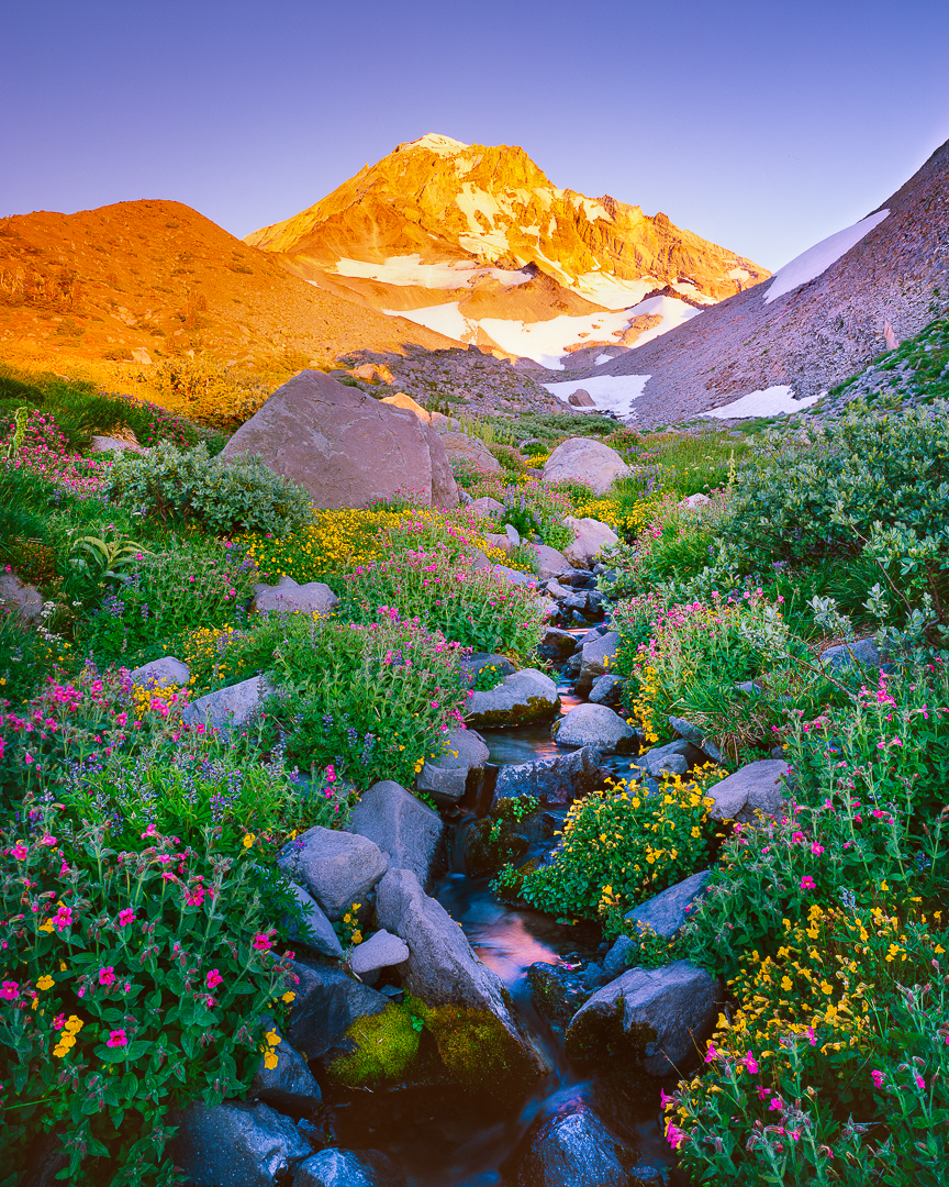 """Alpine Zen"", Mt. Hood Wilderness"
