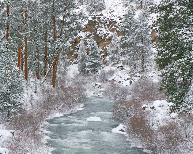 The Deschutes River flanked by snow covered ponderosa trees fill this Central Oregon scene.