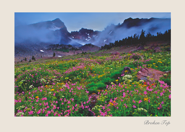 Greeting Card of Central Oregon's Broken Top Mountain with summer wildflowers