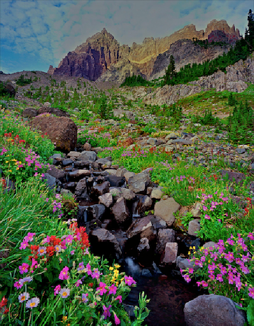 Picture of Central Oregon's Three Fingered Jack Mountain and a wildflower lined alpine stream.