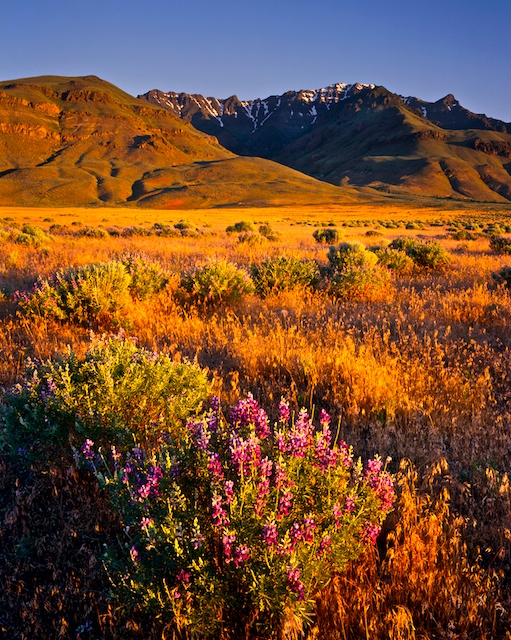 Steens Mountain in the Oregon High Desert