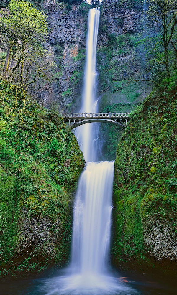 Print of Oregon's Multnomah Falls