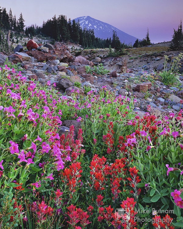 Mt Bachelor in Summer