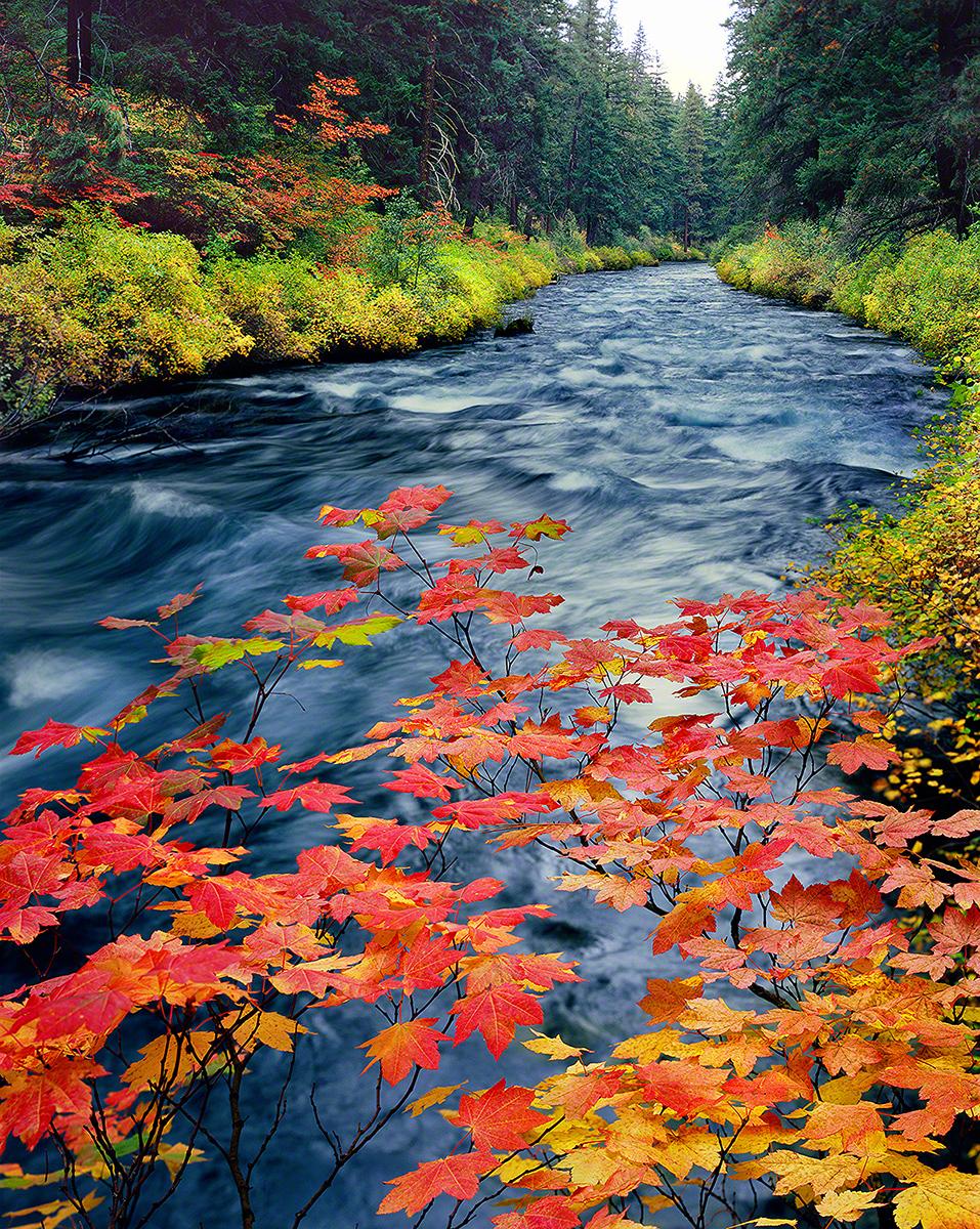 metoius river,autumn,camp sherman,landscape photo,oregon river,central oregon