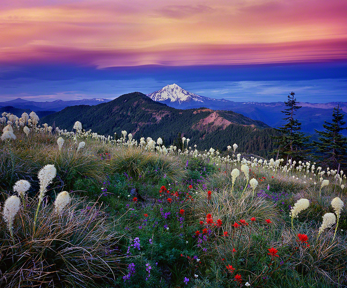 mt jefferson,oregon,sunset,wildflowers,,beargrass,indian paintbrush,
