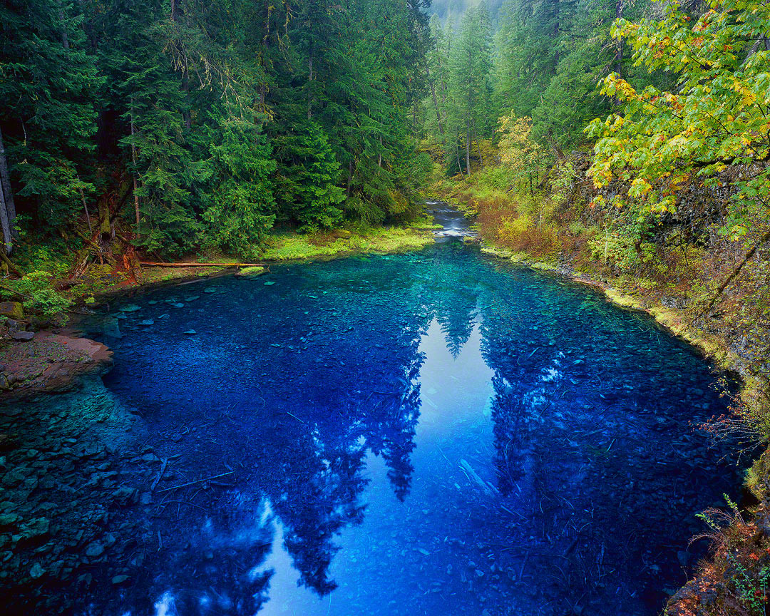 tamolitch pool,blue pool,mckenzie river, oregon water
