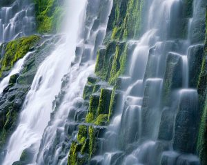 Mossy Steps, Proxy Falls