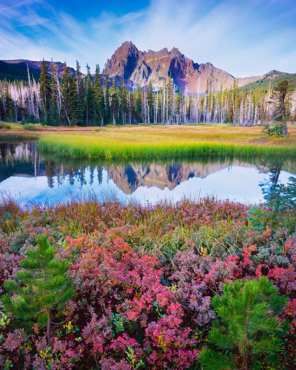 """Mt. Berry Blend"", Three Fingered Jack, Mt Jefferson wilderness area,oregon mountains fall color"