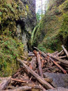 Oneonta Gorge Log Jam