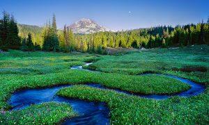 Serpentine Stream, South Sister, Three Sisters Wilderness, Oregon