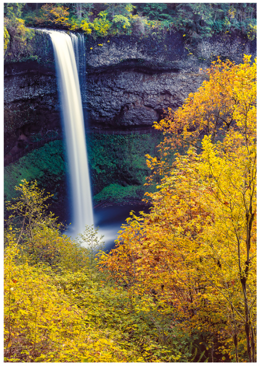 Silver Falls Greeting Cards/Note Cards