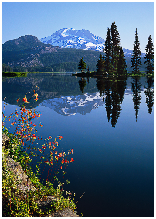 """Morning Elegance"", Sparks Lake Greeting Cards"