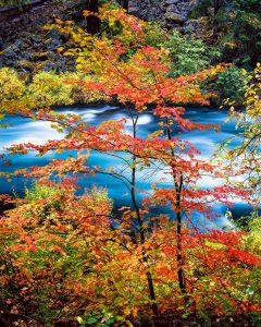 Metals River photos, autumn, fall