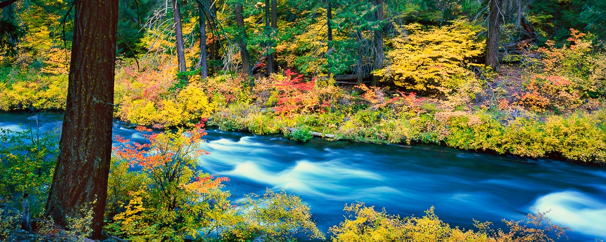 Metolius River Panorama fine art print
