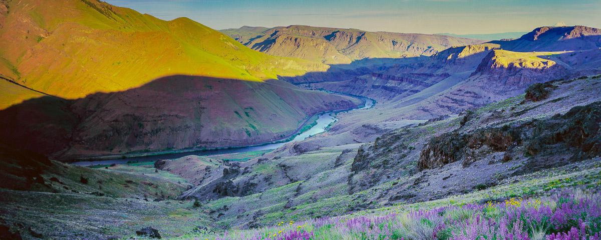 Lower Deschutes Panorama Fine Art Print