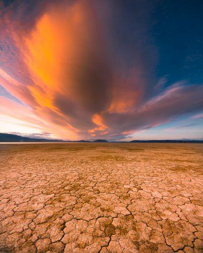 Desert Flame, Alvord Desert