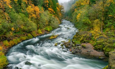 Santiam River in Autumn