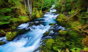 McKenzie River photo,fine art print,photo for sale,Oregon river print