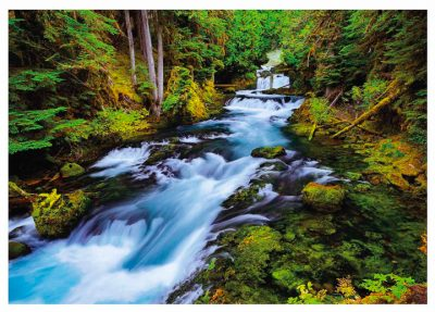 McKenzie River Greeting Cards,Oregon Note Cards