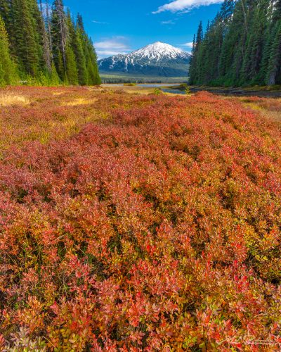 Mt Bachelor fall color,fine art print, landscape photo,Bend Oregon,Deschutes National Forest,Cascade Lakes Highway
